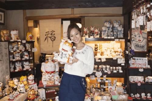 Visit The Cat Museum In Aichi