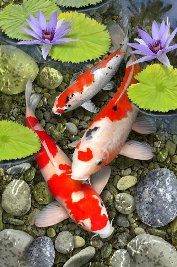 Koi Pond by Howard Robinson (400 Piece Wooden Jigsaw Puzzle) | Nautilus Puzzles - Wooden Jigsaw Puzzles For Adults